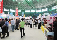 island fair 1