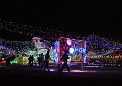 Okinawa is alight for the season with illuminations glittering in several locations around the island. The largest is the 'Itoman Peaceful Illumination' that runs through Jan. 3 at Itoman Tourist Farm.