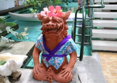 All Shisa on Okinawa will be happy on their special day on April 4.