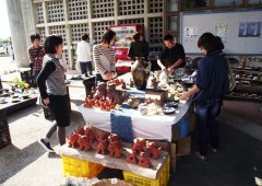 People shop for handicrafts from Ogimi.