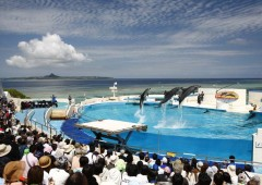 Popular tourist spots, such as Expo Park in Motobu, will experience record crowds during Golden Week holidays in Japan.