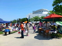 The monthly flea market at Sugar Hall in Sashiki has grown into a very popular event.
