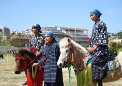 "The small native breed of horses are used for ""Uma Harase"" events with riders wearing traditional-style uniforms made of Chibana ""Hana-ui"" fabric."