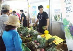 Customers line up to check pineapples on sale in last year's event.