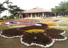 The open space in front of Suimuikan in Shuri Castle Park is now decorated with elaborate seasonal flower arrangements.