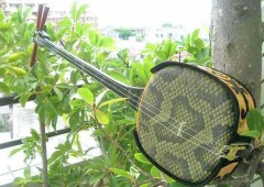 Okinawan sanshin is a very simple instru-ment with three strings.