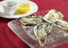 The best raw oysters in Japan are now served at Grand Blue.