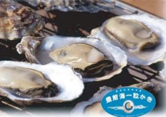 Busen Sea off Kyushu is said to produce the best oysters in the world, which everyone can come to check at JA Okinawa Nanairo Batake Market in Tomigusuku this weekend.