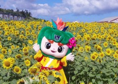 Haebaru Town mascot character Haerun has a touch job of putting her town prominently on visitors' map.