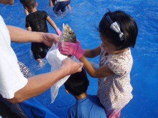 Kids compete in fish catching.