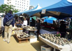 More than 10,000 pieces of pottery are on sale at a discount at the Tsuboya festival.