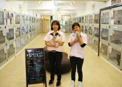 Pet Shop chain Coo & Riku offers one of the largest selections of pets and pet accessories in Japan.