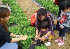 Visitors can try their hand in vegetable gardening among other hands-on experiences.