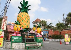 The huge pineapple and hexagonal tower are sure landmarks of Nago Pineapple Park.