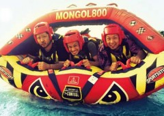 Mongol 800