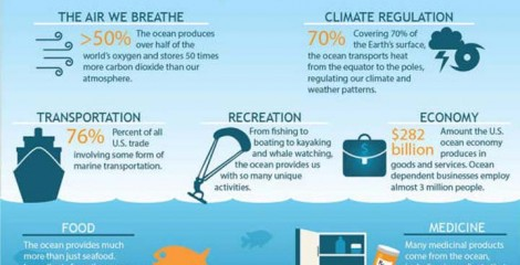 Our oceans are the source of plenty and they should be cared for accordingly.
