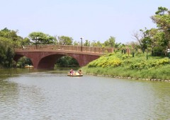 Awase Comprehensive Athletic Park has plenty to do to keep the whole family entertained all day long, including a pond with rental paddle boats.
