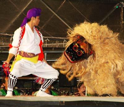 Most lion dances depict action between a man and the lion.