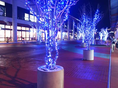 Okinawa Outlet Mall Ashibina is one of the forerunners of year-end illuminations.