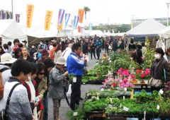 The fair features everything necessary to grow your own greens.