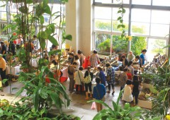 The pottery fair takes place in the Exhibition Hall of the Moon beach Hotel in Onna.