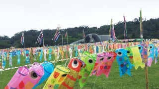 20,000 paper Koinobori fly in the Peace Memorial Park.