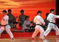 Okinawan karate has everywhere throughout the world.