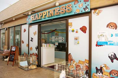 Happiness is located on the second floor of the Vet's Park building.