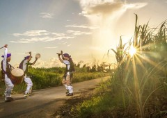 Local youth practice Eisa among sugar cane fields on Miyagi Island.