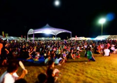 Folks wait for the fireworks show to begin during last year's festival.